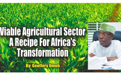 Viable Agric Sector – A Recipe For Africa's Transformation