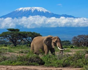 TOP 8 Tourists Attraction Centers In Africa